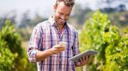 El comparador Vinos.wine se instala en el parque tecnológico de Castilla la Mancha
